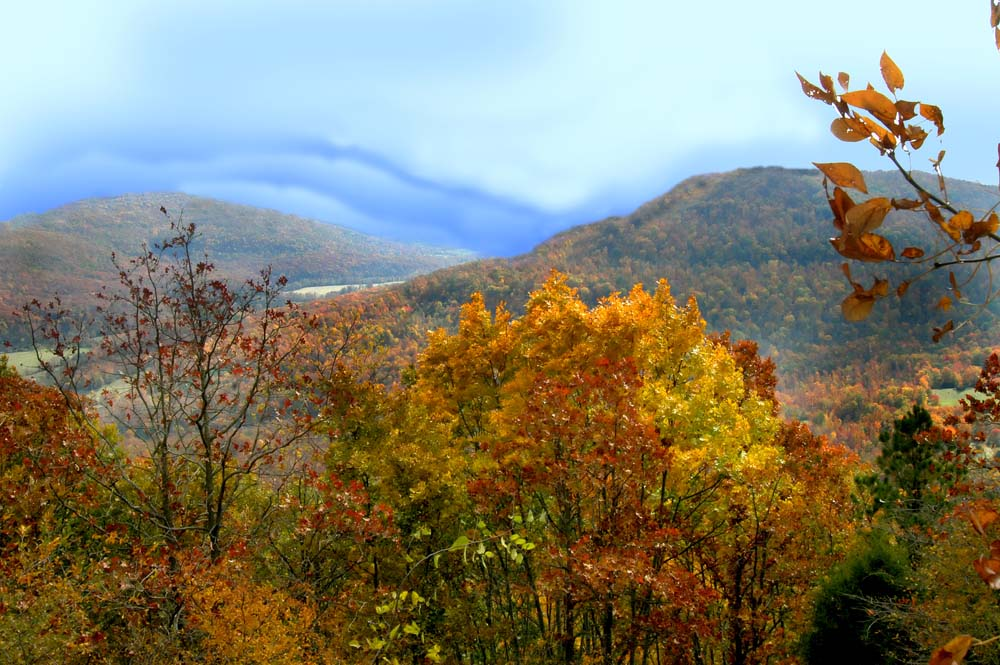 Island Trader Vacations Reviews Georgia's Historic High Country